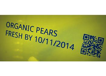 ORGANIC PEARS_web